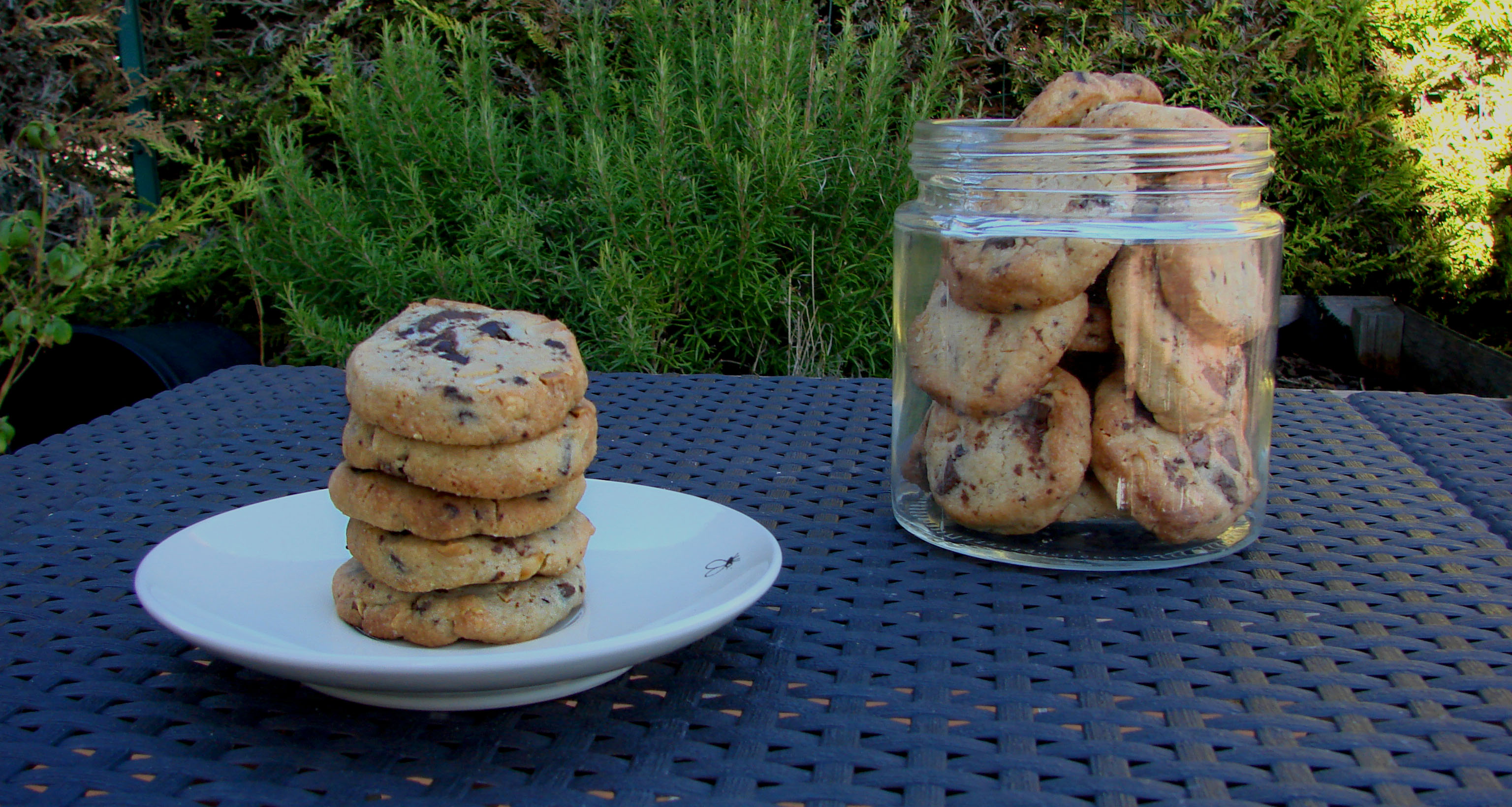 Biscuits aux cacahuètes et pépites de chocolat (grosses les pépites)