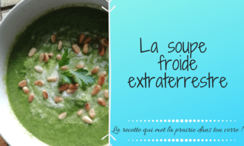 La soupe froide extraterrestre pour faire le plein de légumes verts